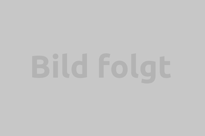 Helligkeitsfleck im Display 03